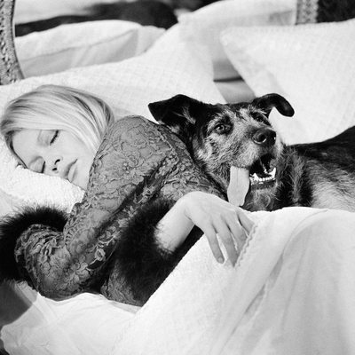 Brigitte Bardot with Dog France 1970 by Terry O Neill