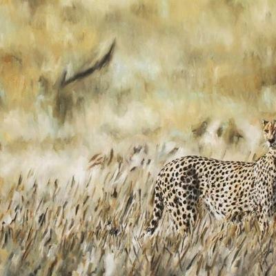 Cheetahs Gaze by Cabtography