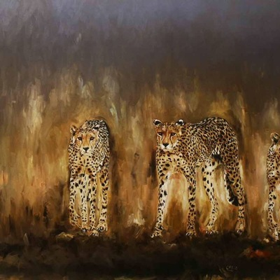 The Cheetahs by Cabtography