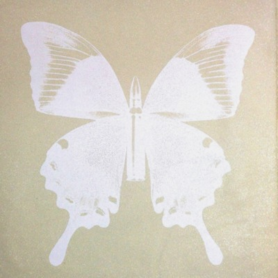 Pearl Butterfly on Beige by Rubem Robierb