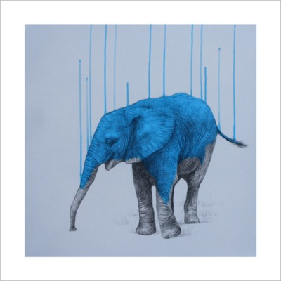 Wild Strengths by Louise McNaught
